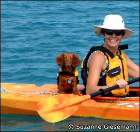 Rudy the Sailing Weiner Dog, photo from Suzanne Giesemann's website www.libertysails.com