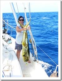 012 fish  dorado 54 inches fish everyday on N coast