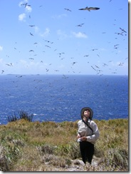 Katharine Lowrie surveying for breeding seabirds in the Grenadines