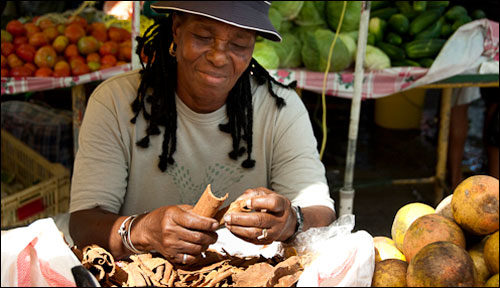 Market woman on Dominica rolling cinnamon bark into sticks