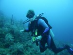 diving utila sherry