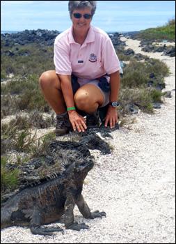 A marine iguana in Galapagos near Ginni