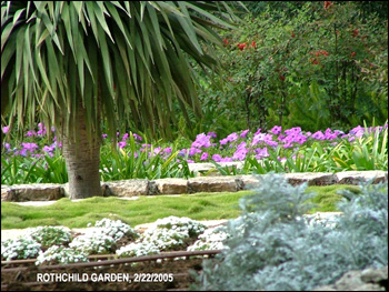 The Rothschild garden, outside Hifa, Israel