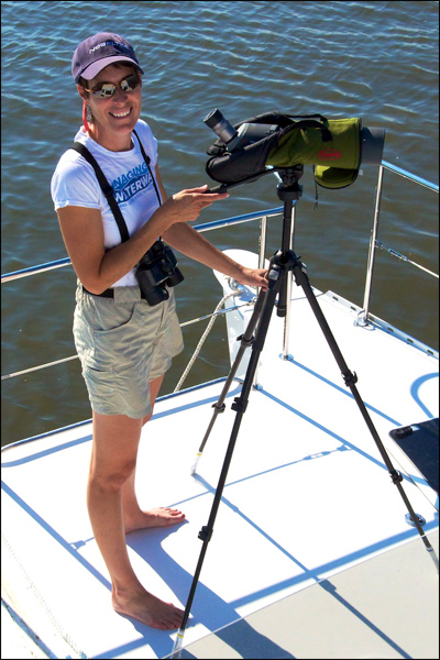 Diana Doyle spotting wildlife in a quiet South Carolina saltmarsh anchorage.