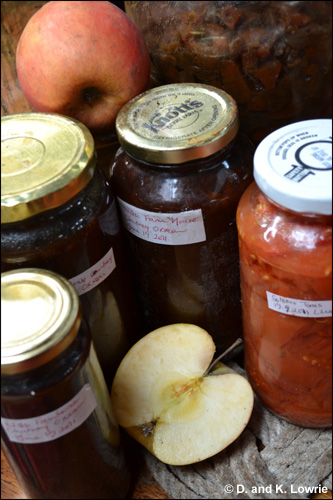 Home Made Preserves, Chile